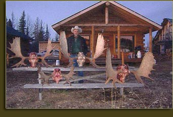 Guided Moose Hunts BC Canada